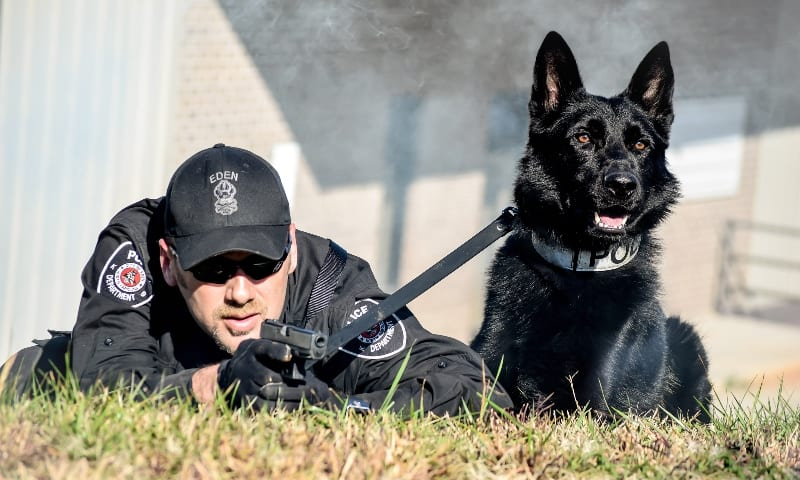 Guard Dog Security | Law Enforcement & Military K9s | Reliance ...