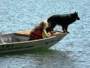 water cadaver dog training