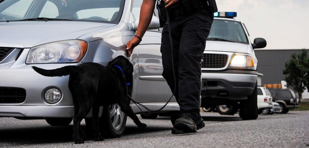 Police K9 Handler Training