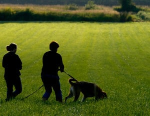 police k9 trailing dog