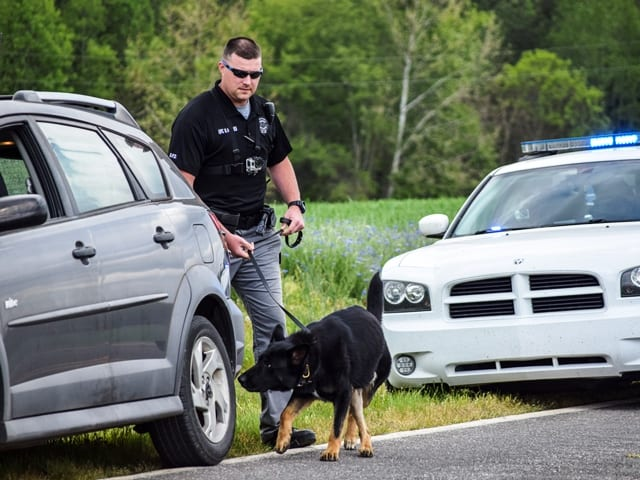 police k9 handler training courses
