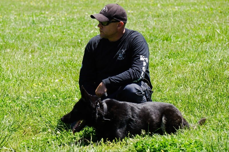 Maximize the Value of Your Next Police K9 Seminar