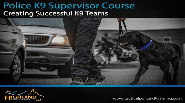 Creating Successful K9 Teams